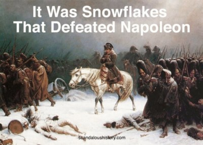 It was snowflakes that defeated Napolean